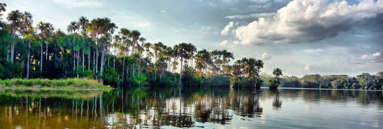 Andean Amazon Trip